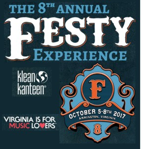 The 8th Festy Experience